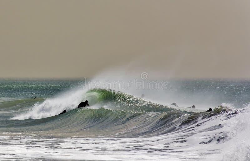 Surfers on breaking wave. People paddling surfboards in ocean on breaking wave royalty free stock photos