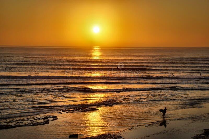 Surfers entrant au coucher du soleil photographie stock libre de droits