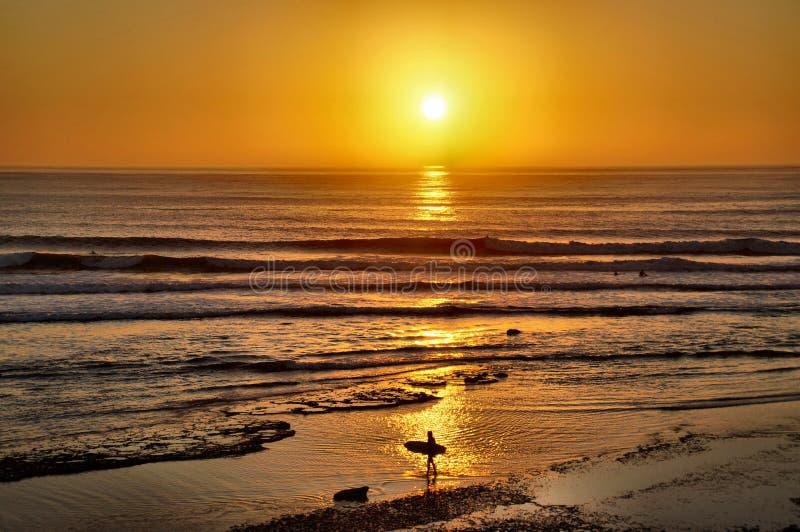 Surfers entrant au coucher du soleil images stock