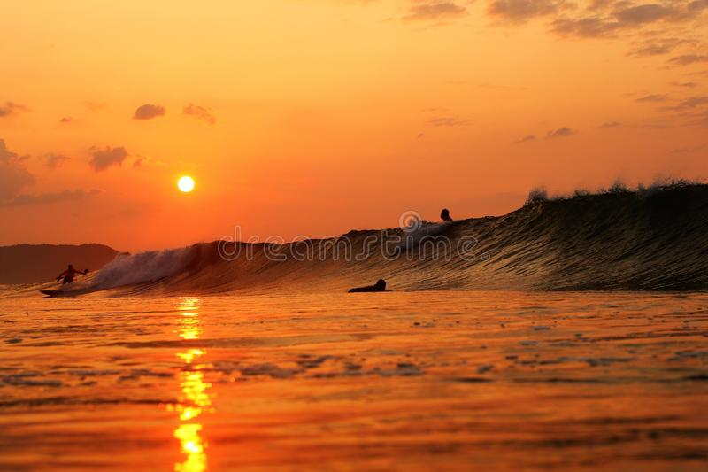 Surfers Sunrise in the Pacific Ocean Japan royalty free stock photo
