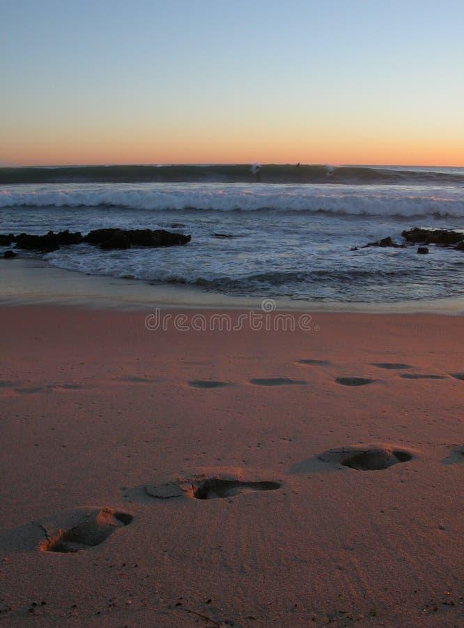 Surfers Sunset Royalty Free Stock Photo