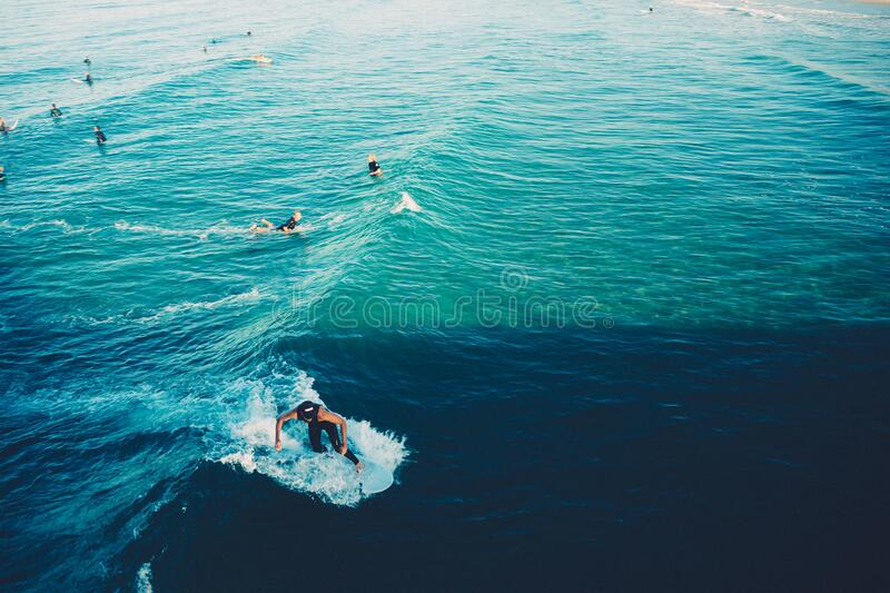 Surfers And Swimmers Free Public Domain Cc0 Image