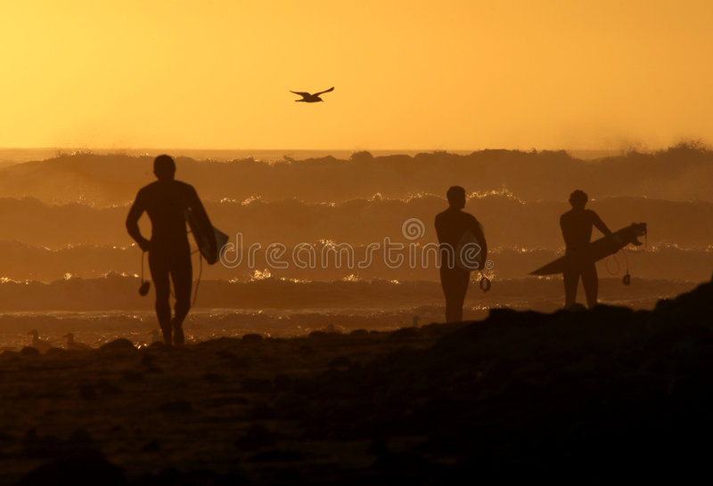 Surfers Walking Down The Beach At Sunset Stock Photo