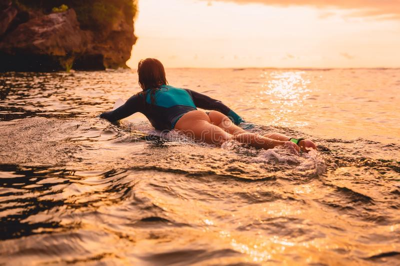 Surfgirl with perfect body on a surfboard floating in ocean. Surfing at sunset stock images