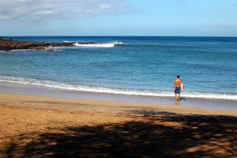 Download Surfing stock image. Image of holiday, dude, coastline - 1379239