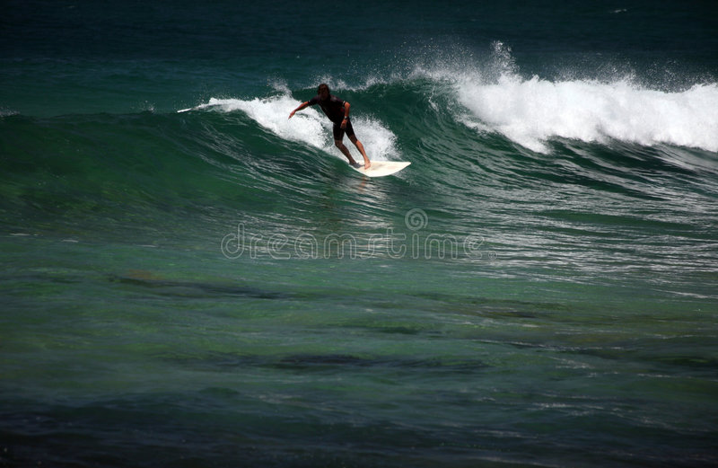 Download Surfing stock photo. Image of wash, tidal, surf, board - 1547916