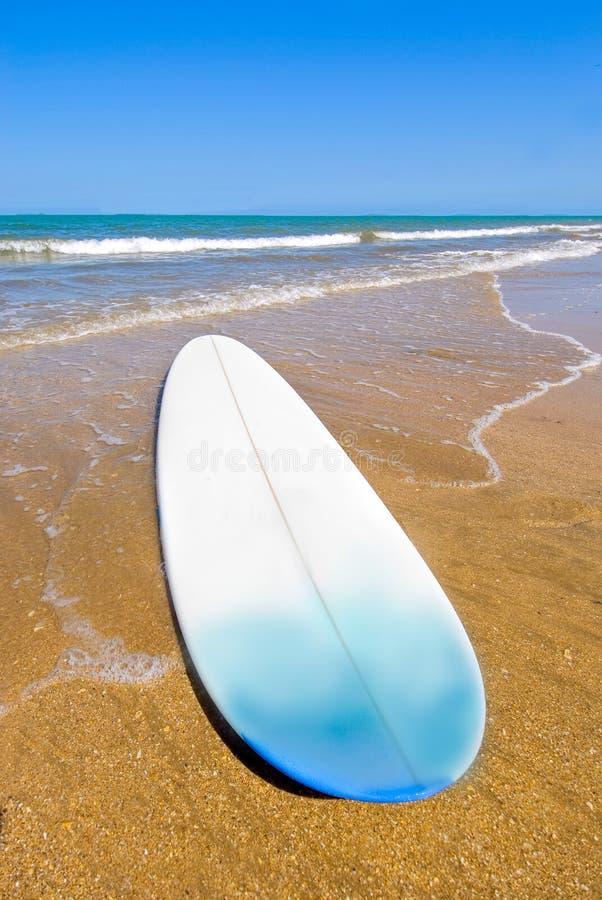 Free Surfing Stock Photos - 1723703