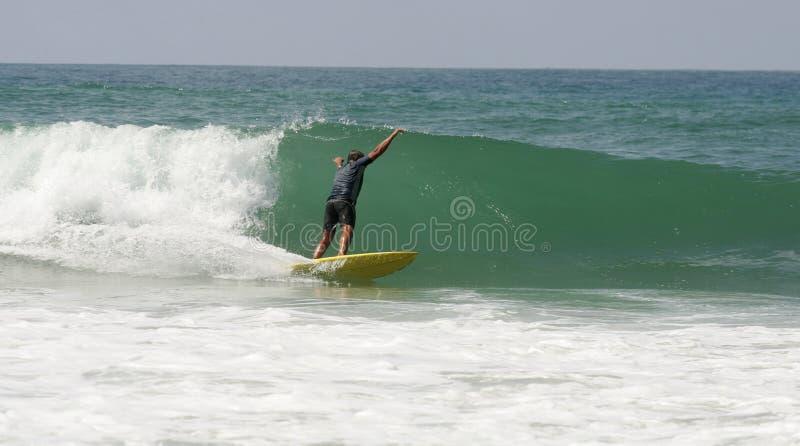 surfing obraz stock