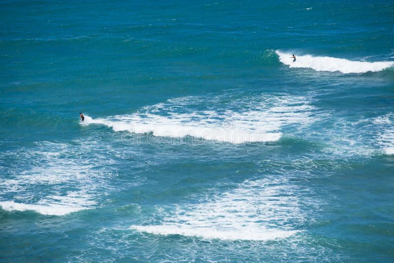 Surfing Diamond head Hawai 001i stock image