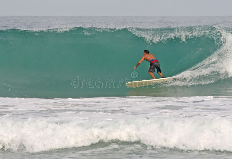Surfing Hollow Waves royalty free stock photo