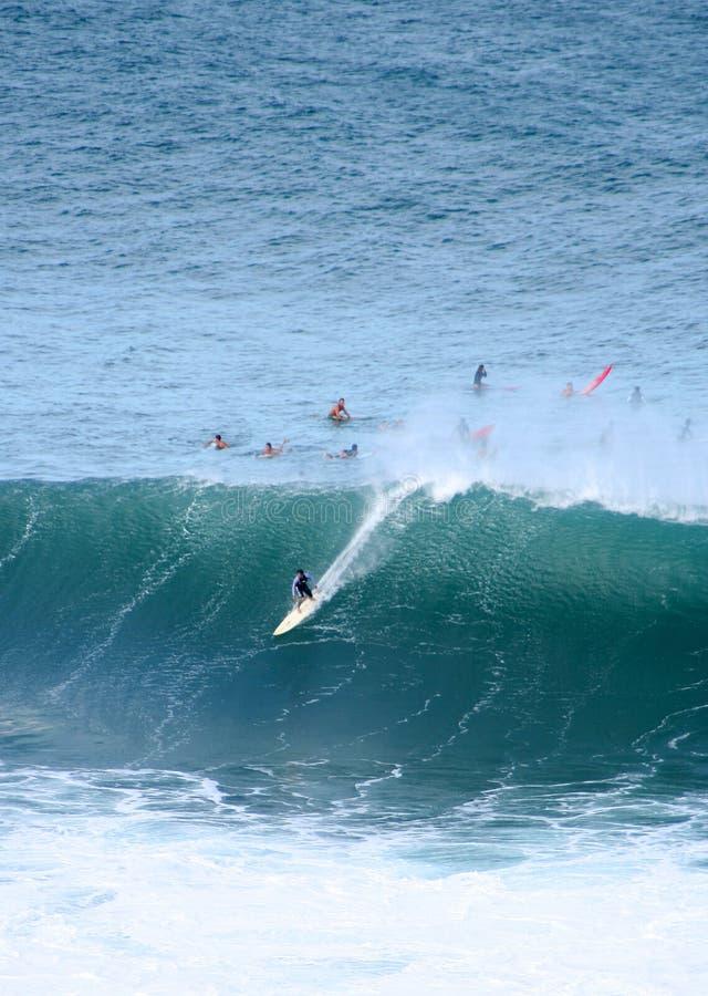 Surfing monsters, Waimea Bay, Hawaii