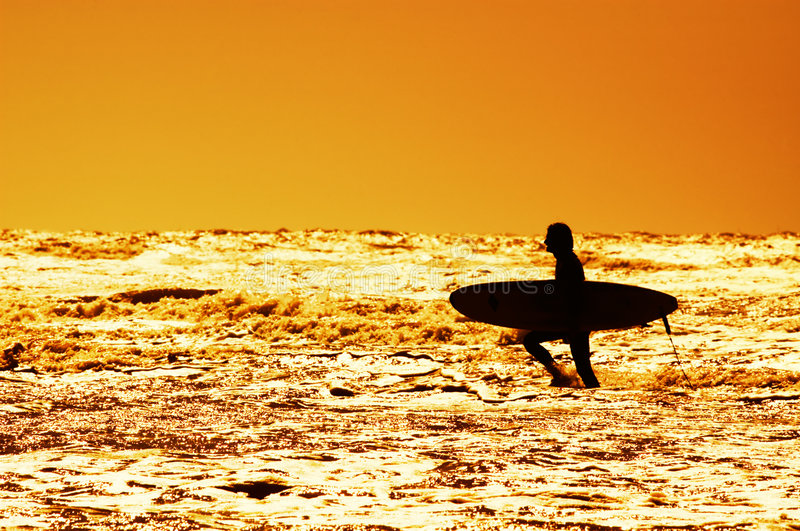 Download Surfing and sunset stock photo. Image of lifestyle, swim - 2465708