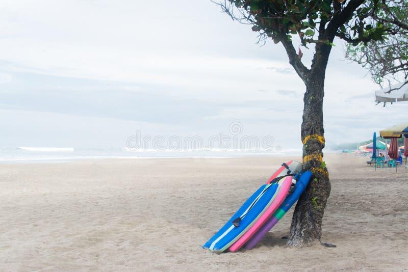 Surfingbräda tre under trädet i den Seminyak stranden Kuta Bali arkivbilder