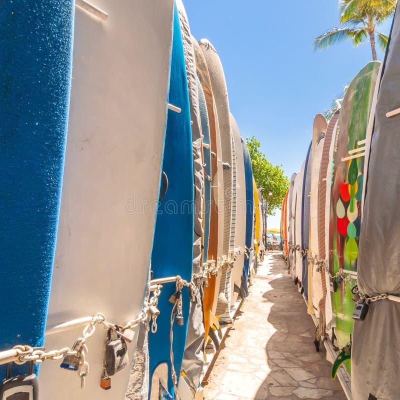 Surfingbrädor på den Waikiki stranden, Hawaii arkivfoto