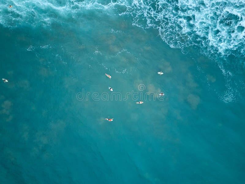 Surfingowa pływanie w błękitne wody zdjęcia royalty free