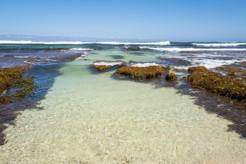 Surfingowa punkt w zachodniej australii obrazy stock