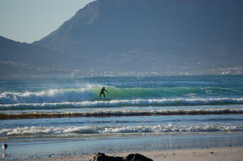 Surfingowiec jedzie falę otaczającą górami, Kapsztad, Południowa Afryka zdjęcie stock