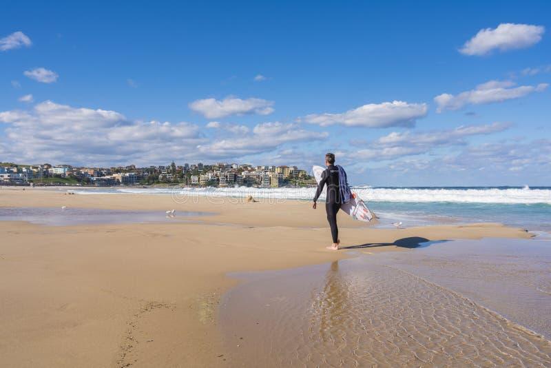 Surfingowiec przy Sydney Bondi plażą, Australia fotografia royalty free