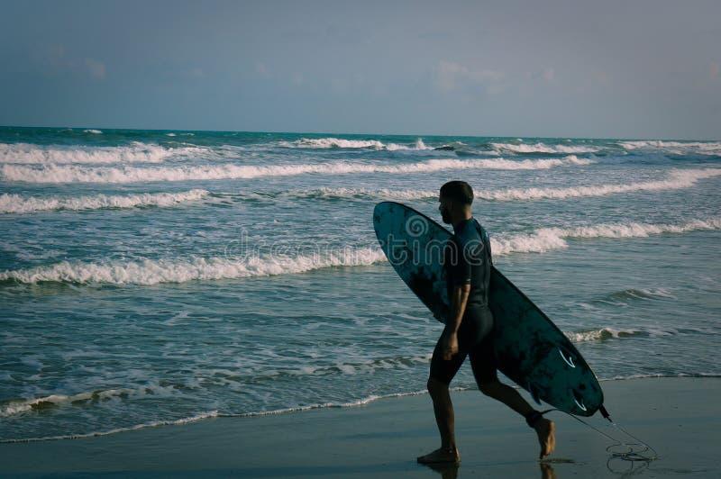 Surfingowiec w cieniu zdjęcie royalty free