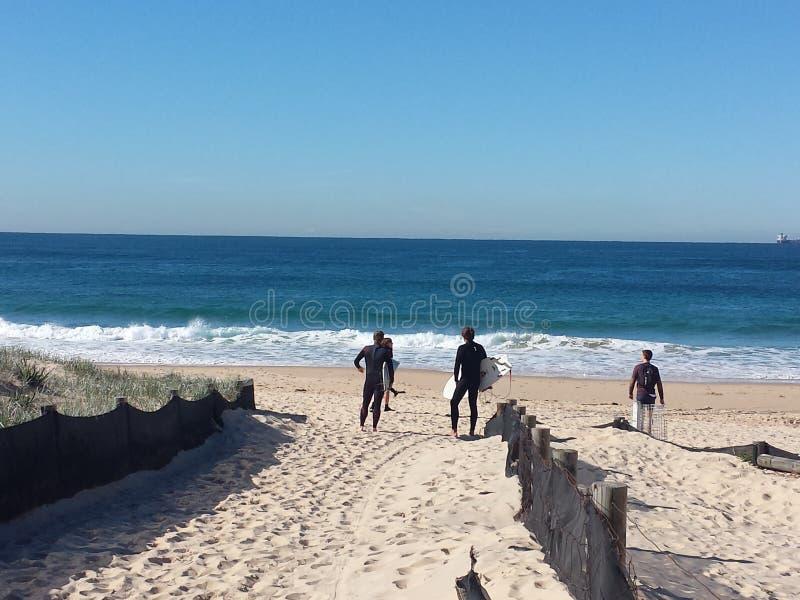 Surfingowowie na Nobbys plaży, Newcastle Australia zdjęcie stock