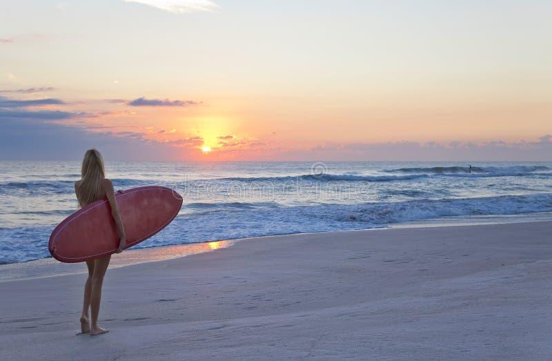 Surfista & prancha da mulher na praia do nascer do sol do por do sol imagens de stock royalty free