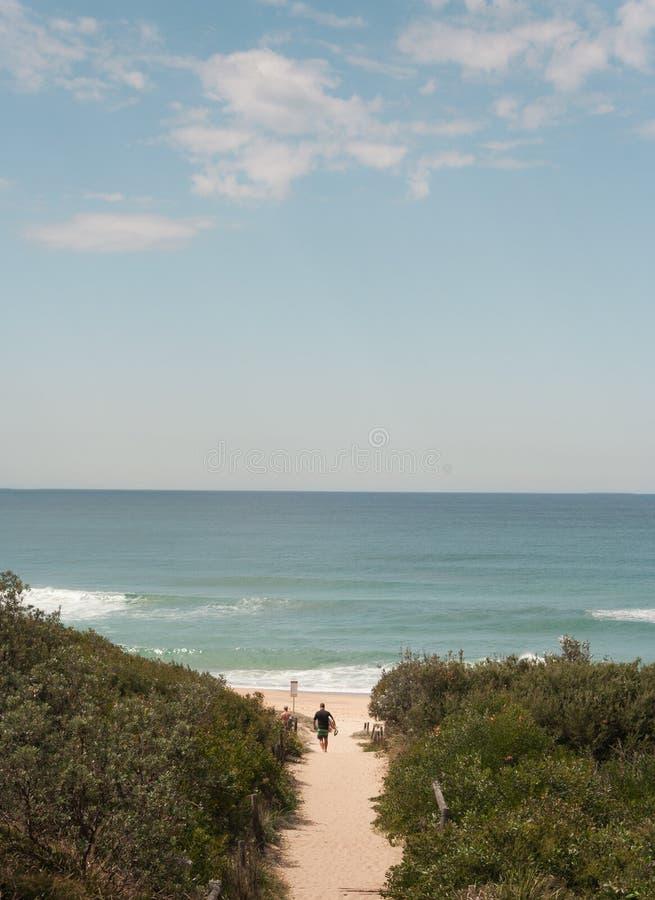 Surfista che si dirige giù il percorso alla spiaggia praticante il surfing fotografia stock libera da diritti