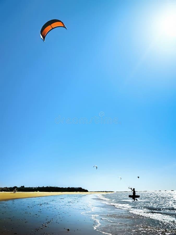 Surfista do papagaio que anda para fora o mar contra um céu azul bonito Silhueta do surfista do papagaio na praia imagens de stock