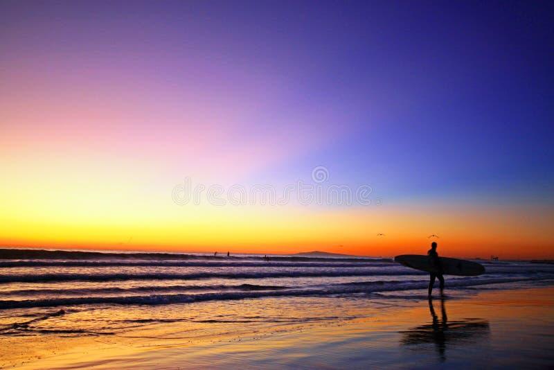 Surfista e por do sol imagem de stock royalty free