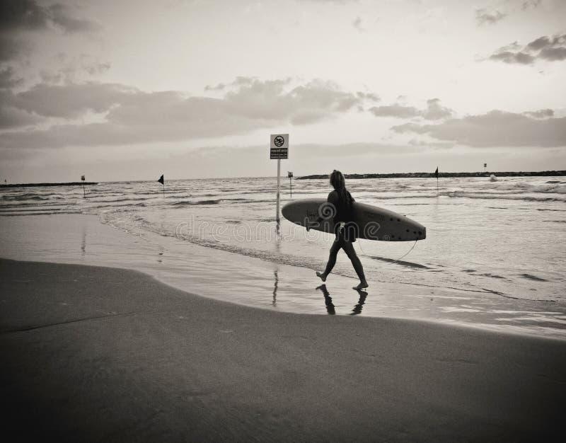 Surfista fêmea novo com a placa que anda na praia, refletida na água, sob um céu nebuloso fotografia de stock