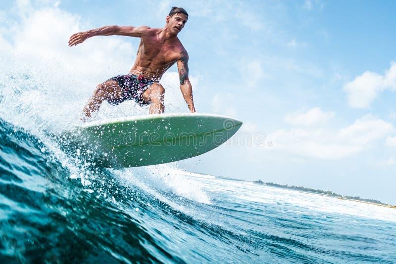 Surfista immagini stock