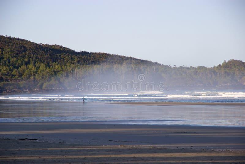 Surfista na baía enevoada de Cox, Tofino, Columbia Britânica, Canadá foto de stock