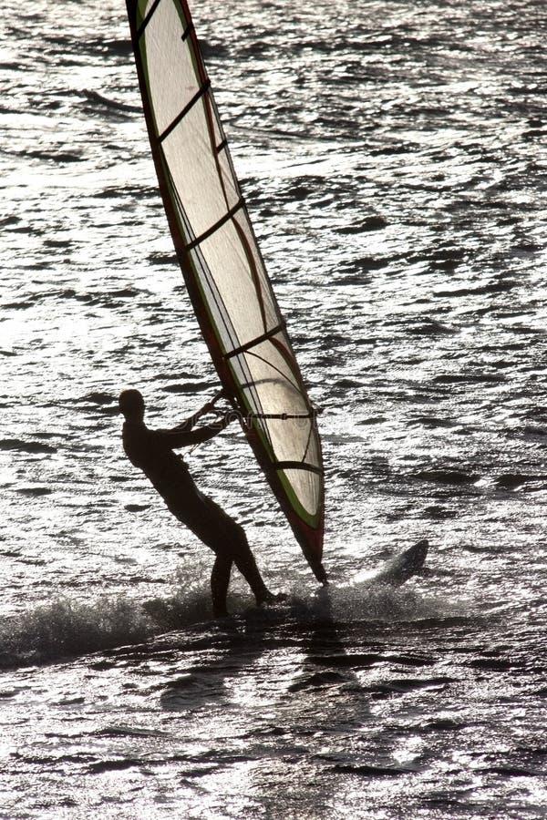 Surfista nell'azione lungo il litorale olandese immagine stock