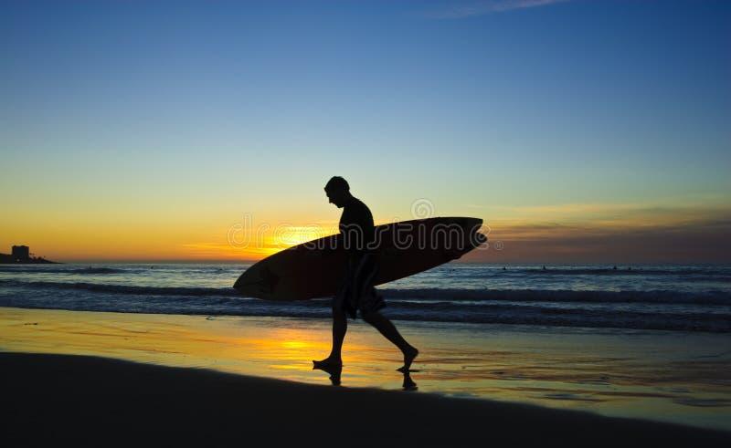 Surfista no por do sol, costas de La Jolla foto de stock