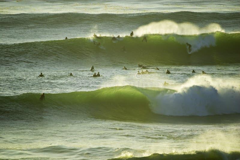 Surfista pacífico foto de stock royalty free