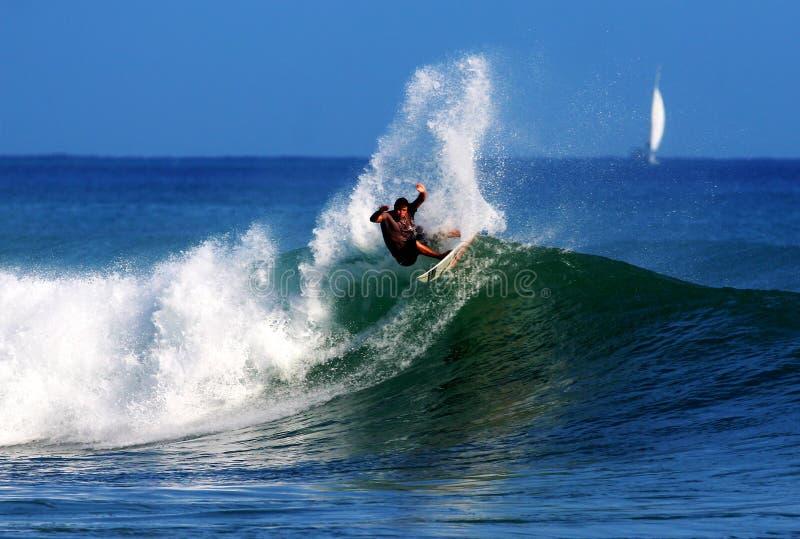 Surfista professionista Anthony Walsh che pratica il surfing l'Hawai immagini stock libere da diritti