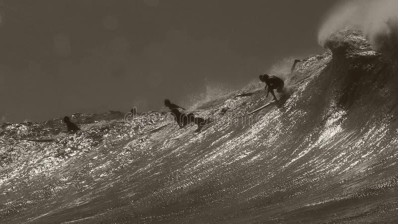 Surfista que deixa cair dentro na baía de Waimea fotografia de stock royalty free