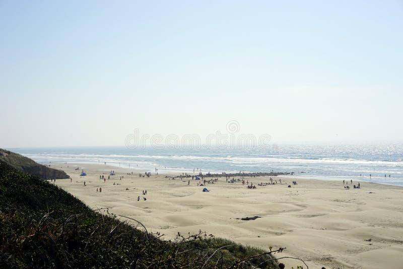 Surfistas e frequentadores da praia primeiramente para ver o eclipse solar total imagem de stock