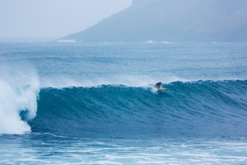 Surfistas em uma água fria do Mar do Norte fotos de stock