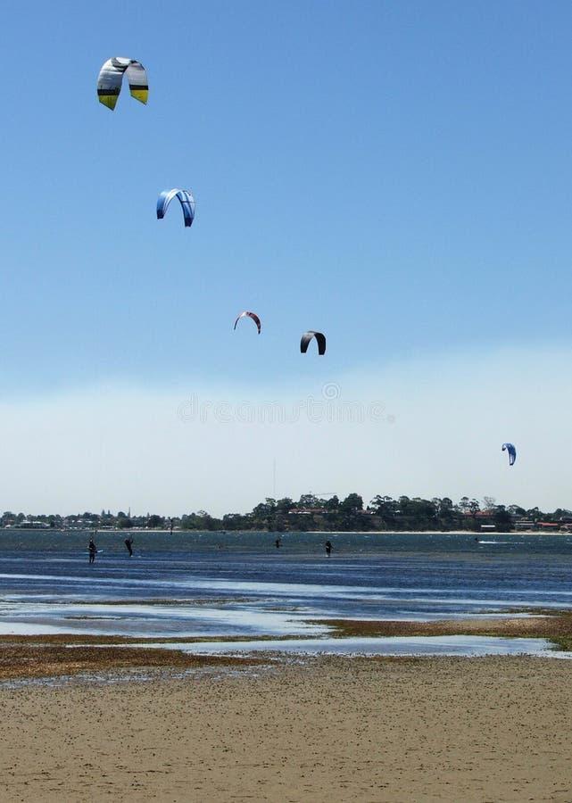 Download Surfisti del cervo volante immagine stock. Immagine di estremo - 200543