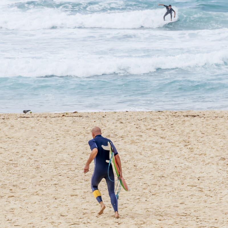 Surfisti nell'azione sulla spiaggia di Bondi a Sydney, Australia immagine stock