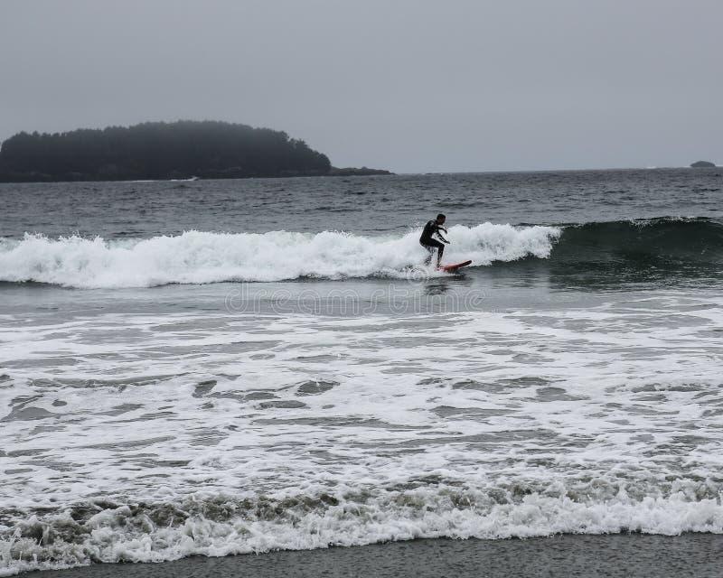 Surfować blisko Tofino obraz stock