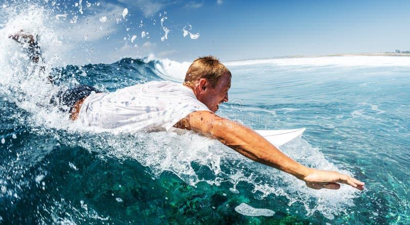 surfowa? obraz royalty free