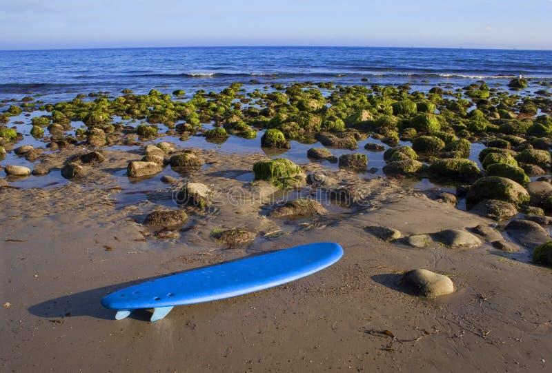 Surfplank op het Landschap van het Strand stock fotografie