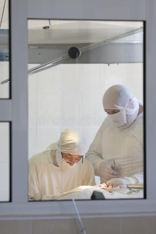 Surgeon team. At work behind the window stock photo