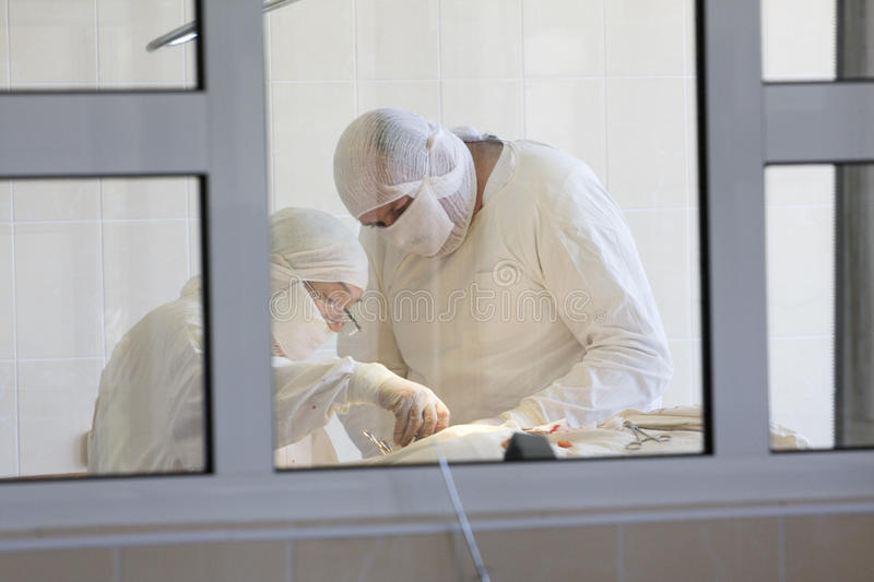 Surgeon team at work. Behind the window royalty free stock photography