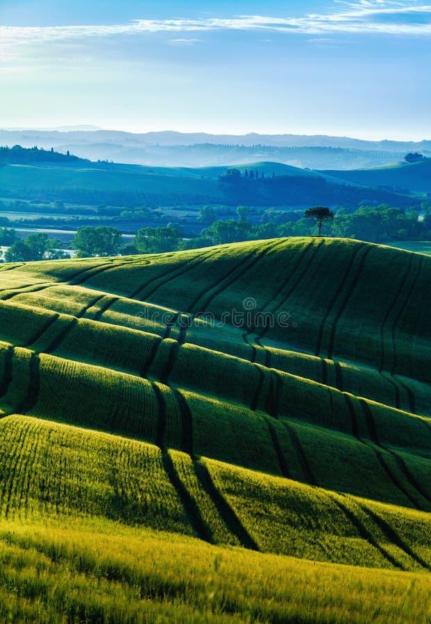 Surgimento solar na Toscana foto de stock royalty free