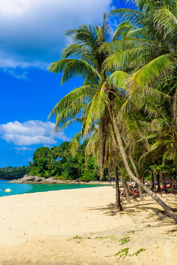 Surin beach, Paradise beach with golden sand, crystal water and palm trees, Patong area on Phuket Island, Tropical travel royalty free stock photos