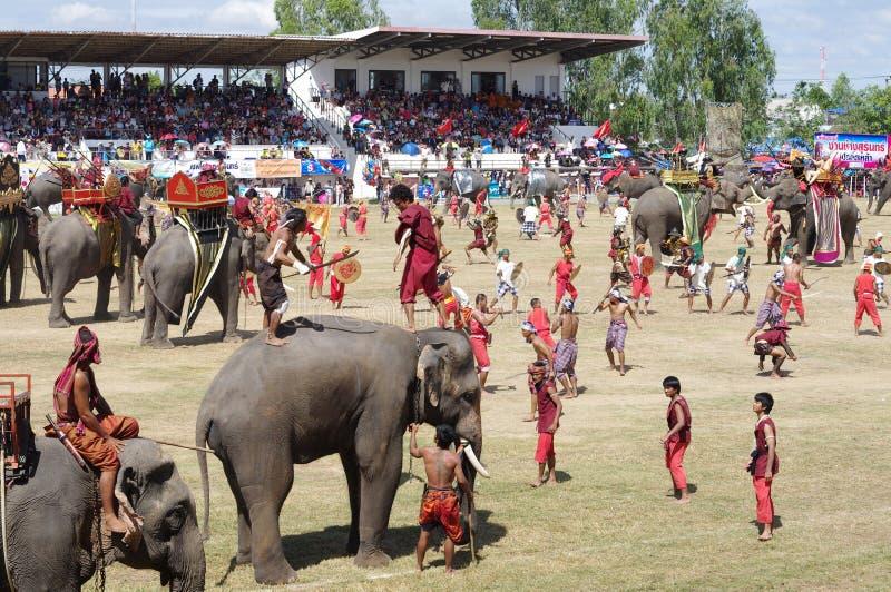 The Surin Elephant Round-up stock image