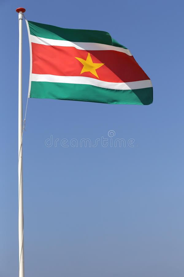 Surinaamse vlag stock foto