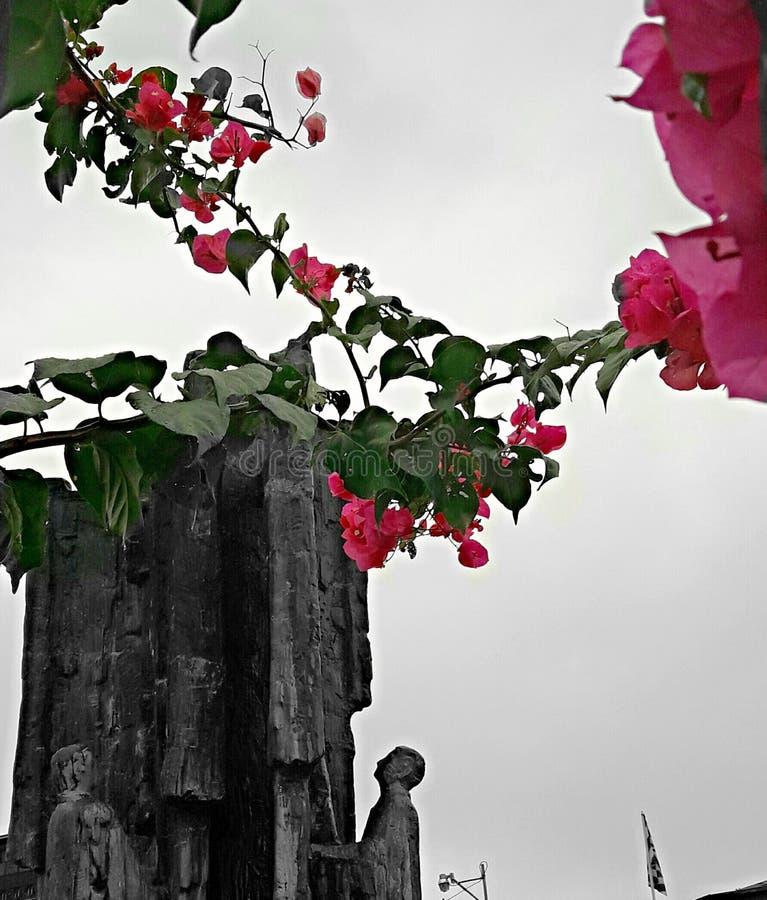 Suriname statue royalty free stock image